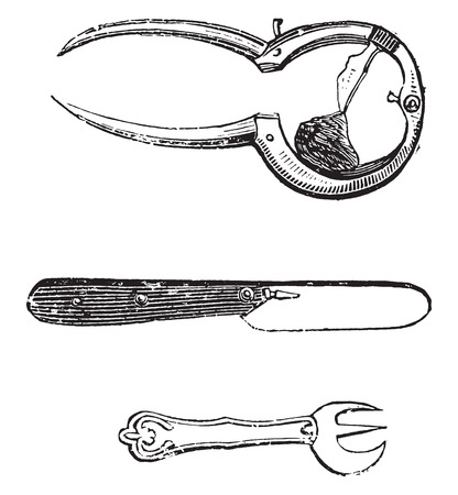 detach: Oysters tool, vintage engraved illustration.