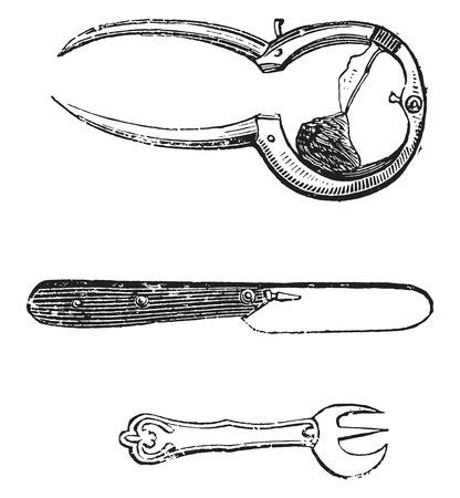 Oysters Werkzeug, Jahrgang gravierte Darstellung. Standard-Bild - 41711866