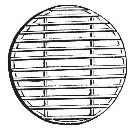 Cheese Regale, Jahrgang gravierte Darstellung. Standard-Bild - 41711950