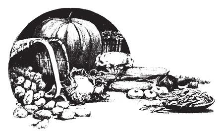 Good enough to eat, vintage engraved illustration.