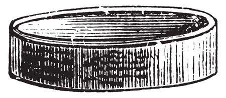 temptation: Cheeses shape, vintage engraved illustration. Illustration