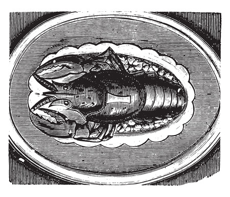 indulgence: Lobster served on a jelly, vintage engraved illustration.