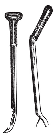 gouge: Gouge and knife for picking asparagus, vintage engraved illustration.