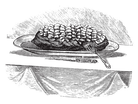 indulgence: Fricandeau, vintage engraved illustration.
