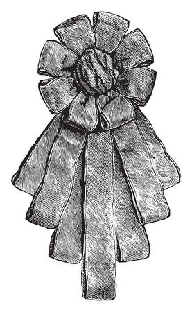 sash: New Sash, vintage engraved illustration.