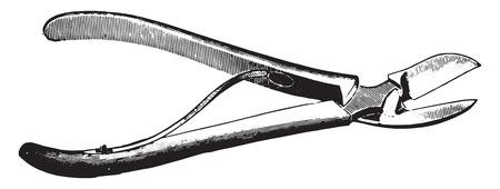 medical instruments: Bone cutting forceps, vintage engraved illustration. Illustration