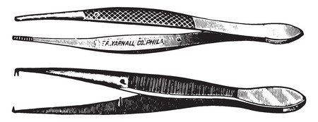 pliers: Dissecting forceps, vintage engraved illustration.
