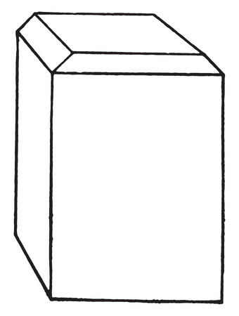 paraffine: Block of hard wood or of rubber fiber with corners properly trimmed to receive paraffin or celloidin for embedding, vintage engraved illustration.