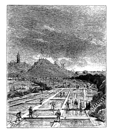 The Tour de France a small Parisian, Salt marshes, vintage engraved illustration. Journal des Voyage, Travel Journal, (1880-81). Ilustrace