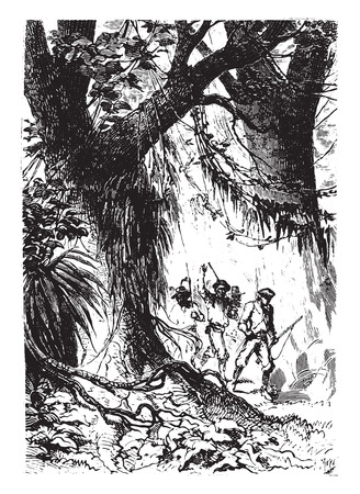 antique rifle: The little band had not gone fifty steps, vintage engraved illustration.