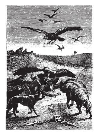 Wild Beasts bewoners van het land, vintage gegraveerde illustratie.