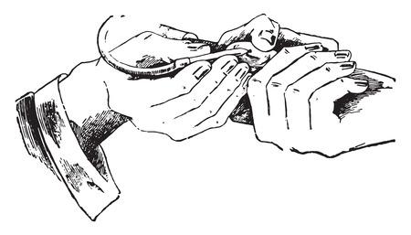 A method of filling the centrifuge tube, vintage engraved illustration.