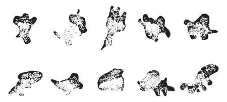 Leukocyten van een kikker, vintage gegraveerde illustratie. Stockfoto - 41713703