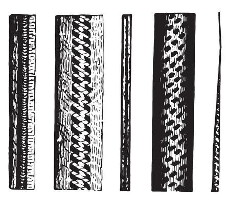 The dimensions of Beaver fur, vintage engraved illustration.