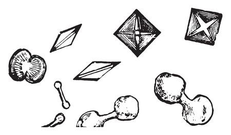 Dumbbell and octadehdral crystals of calcium oxalate, vintage engraved illustration. Ilustração