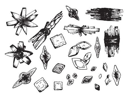 hydrochloric: Some forms of uric acid, vintage engraved illustration.
