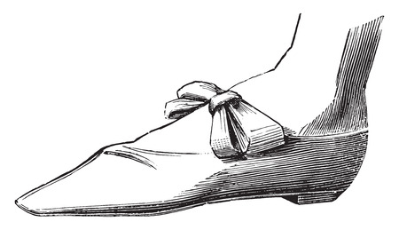 Shoe Napoleon. Small Suit (1805), vintage engraved illustration. Industrial encyclopedia E.-O. Lami - 1875.