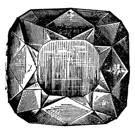 the encyclopedia: Regent, vintage engraved illustration. Industrial encyclopedia E.-O. Lami - 1875.