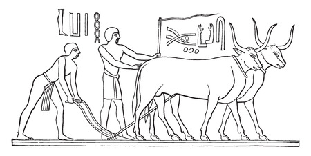 bas relief: Bas-relief sur les tombes de Memphis, mill�sime grav� illustration. E.-O. encyclop�die industrielle Lami - 1875.