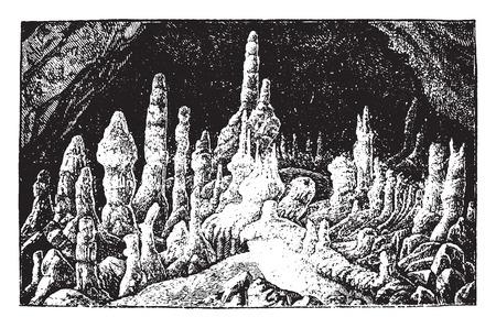 peat: Stalagmites, vintage engraved illustration. La Vie dans la nature, 1890.