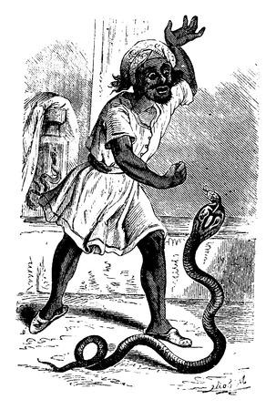 charmer: Snake Charmer. vintage engraved illustration. From La Vie dans la nature, 1890. Illustration