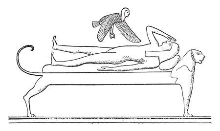 deceased: The soul flying over the deceased, vintage engraved illustration. Illustration