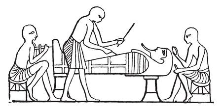 mummy: Polishing the mummy, vintage engraved illustration.