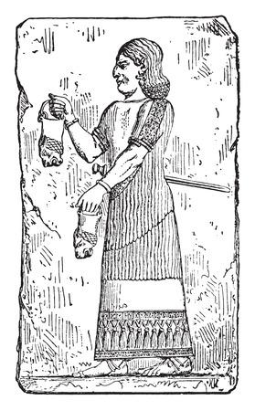 Eunuch, vintage engraved illustration.