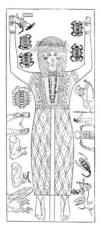 Sarcophagus Painting, vintage engraved illustration.