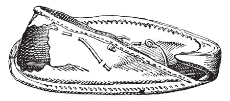 sole: Egyptian shoe with sole, vintage engraved illustration.