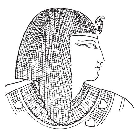 egyptian woman: Egyptian headdress, vintage engraved illustration. Illustration