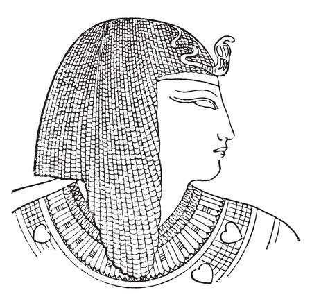 black woman: Egyptian headdress, vintage engraved illustration. Illustration