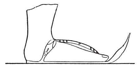 sandal: Cosecha ilustraci�n grabada Sandalia,.