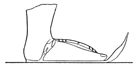Sandal, vintage engraved illustration.