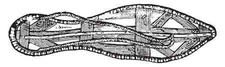 sandal: Cosecha ilustración grabada Sandalia,.