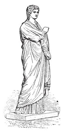 Woman, (balbus family), vintage engraved illustration. Illustration