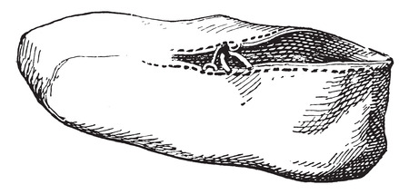 Egyptian shoe without a sole, vintage engraved illustration.