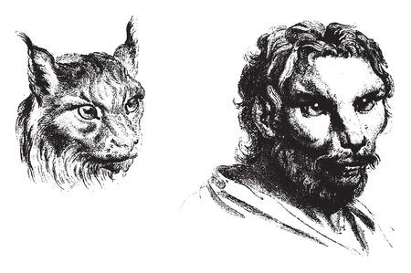 before: Cat, vintage engraved illustration. Earth before man – 1886.