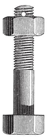 pernos: Tornillo y tuerca, ilustración de la vendimia grabado. E.-O. enciclopedia Industrial Lami - 1875.