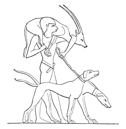 A gazelle hunter, vintage engraved illustration. Иллюстрация