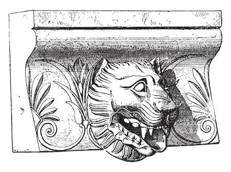 Lion Metaponto, vintage engraved illustration. Ilustração