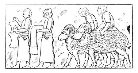 woollen: Dependent people and animals, vintage engraved illustration.