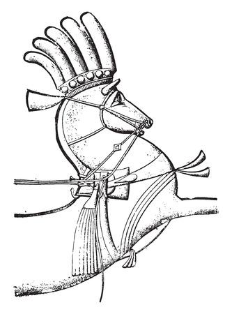Harness, vintage engraved illustration. Çizim