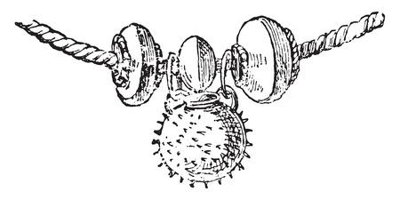 fragment: Fragment necklace, vintage engraved illustration. Illustration