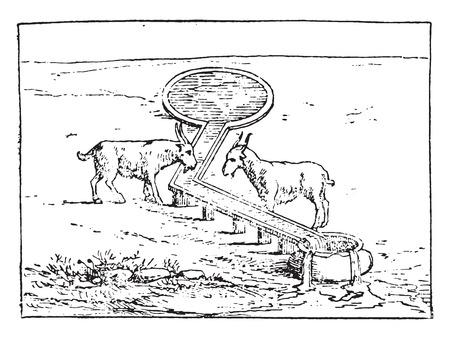 trough: Watering Trough, vintage engraved illustration. Illustration