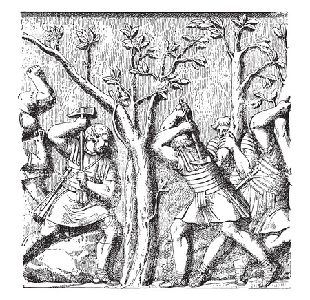 trajan: Roman soldiers shooting down a tree, vintage engraved illustration.