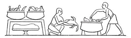 poultry: Cooking poultry, vintage engraved illustration.