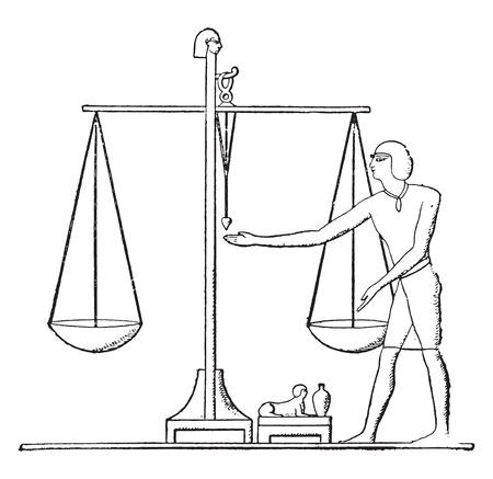 A scale, vintage engraved illustration.