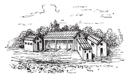black and white farm: Farmyard, vintage engraved illustration.