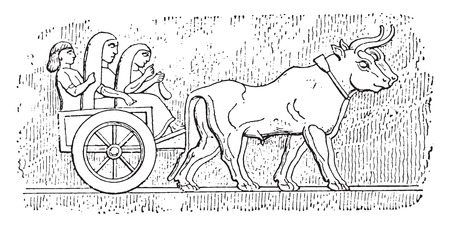 bullock: Assyrian cart, vintage engraved illustration.